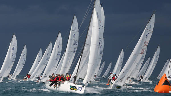 Photograph - Key West Regatta by Steven Lapkin
