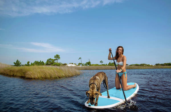 Grayton Beach Photograph - A Young Woman And Her Dog Sup by Corey Nolen