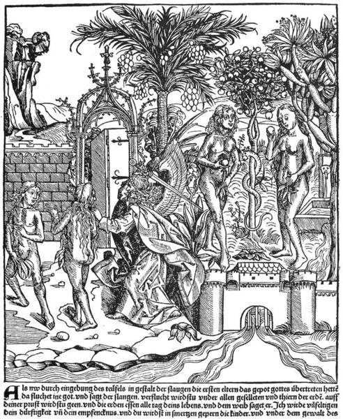 Wall Art - Painting - Adam & Eve by Granger