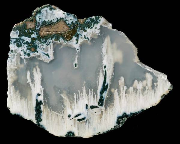 Geodes Photograph - Agate by Natural History Museum, London/science Photo Library
