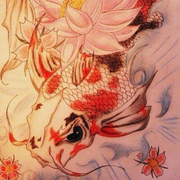 Japanese Koi Photograph - #art #drawing #igers #ighub by Lisa Jc