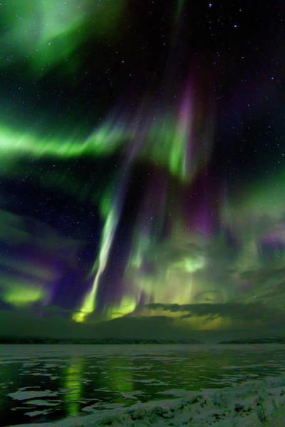 Scandinavian Photograph - Aurora Borealis by Babak Tafreshi