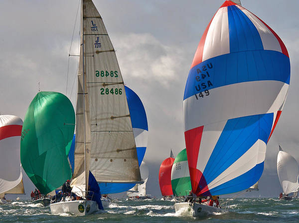 Photograph - Bay Spinnakers by Steven Lapkin