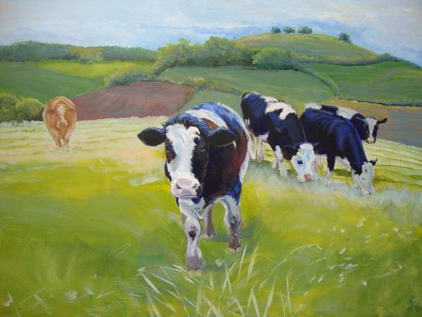 Painting - Cows by Mike Jory