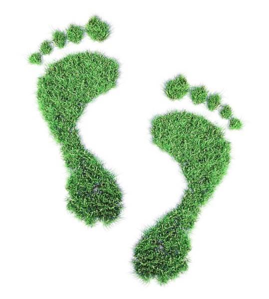 Wall Art - Photograph - Ecological Footprint by Andrzej Wojcicki/science Photo Library