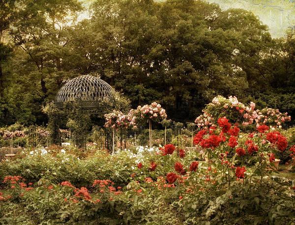 Gazebo Photograph - Garden Gazebo by Jessica Jenney