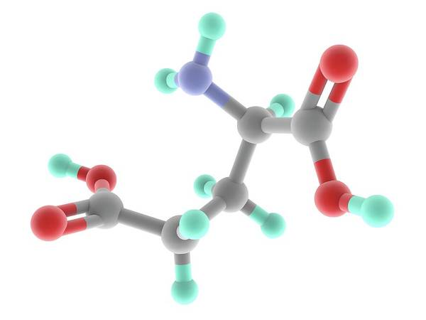 Wall Art - Photograph - Glutamic Acid Molecule by Alfred Pasieka/science Photo Library