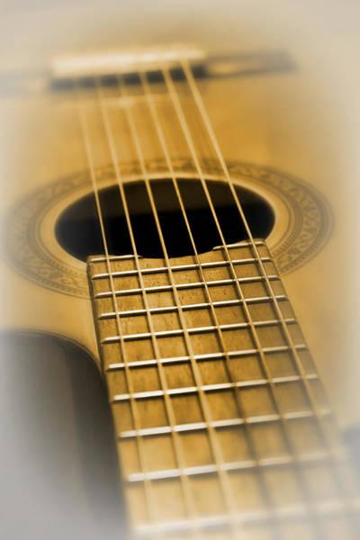 Fret Board Photograph - 6 Golden Strings by Daniel Hagerman