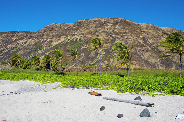 Wall Art - Photograph - Halape Beach, Puna Coast Trail, Hawaii by Joshua Rainey