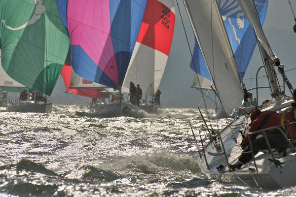 Photograph - Holiday Sail Sale by Steven Lapkin