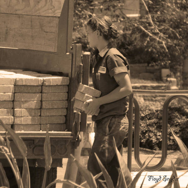 Photograph - Lady Bricklayer by Floyd Snyder