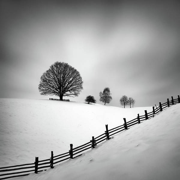 Fences Wall Art - Photograph - 6 by Martin Rak