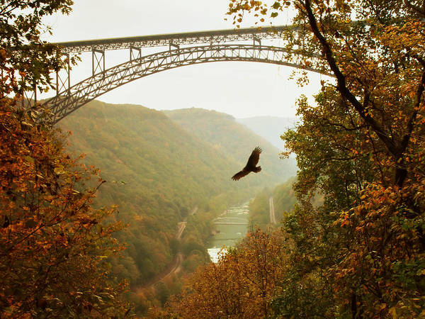 West Virginia Photograph - New River Gorge Bridge by Mary Almond