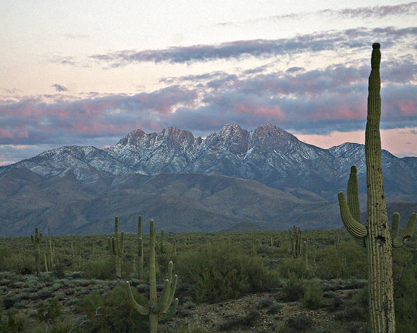 Photograph - Four Peaks Sunset Snow by Matalyn Gardner