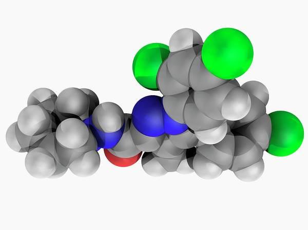 Wall Art - Photograph - Rimonabant Drug Molecule by Laguna Design/science Photo Library