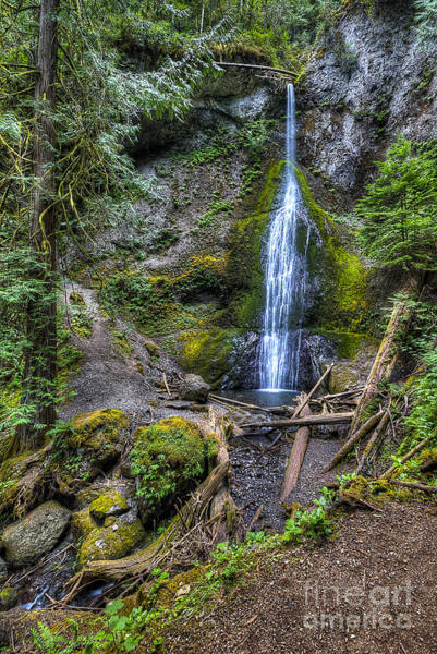 Wall Art - Photograph - Sol Duc Falls by Twenty Two North Photography