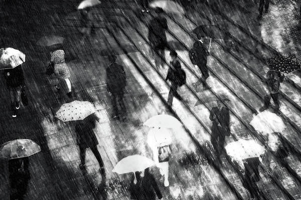 Rainy Photograph - Untitled by Teruhiko Tsuchida