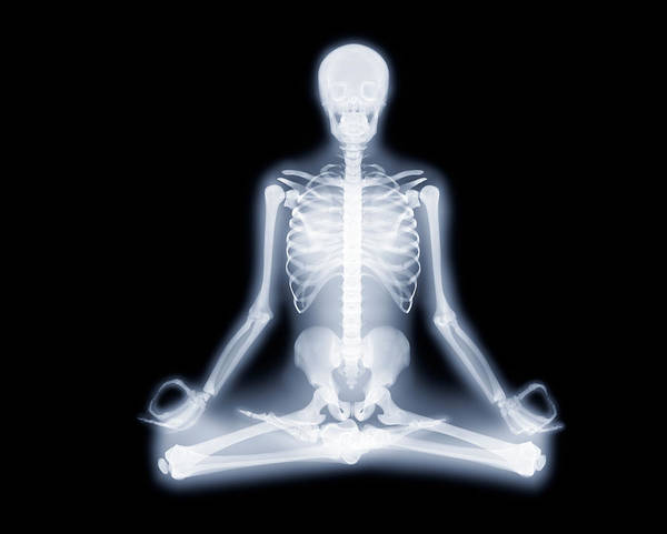 Peace And Harmony Wall Art - Photograph - Yoga Position by Gustoimages/science Photo Library