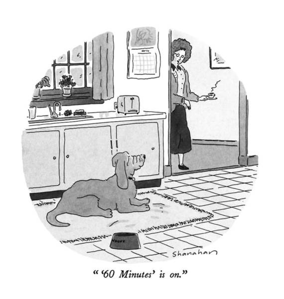 Pet Drawing - '60 Minutes' Is On by Danny Shanahan