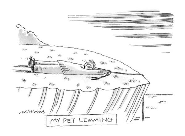 Leash Drawing - My Pet Lemming by Mick Stevens