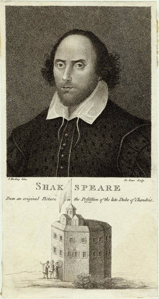 Globe Theatre Drawing - William Shakespeare (1564 - 1616) by Mary Evans Picture Library