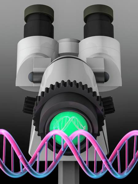 Wall Art - Photograph - Genetic Engineering by Laguna Design/science Photo Library