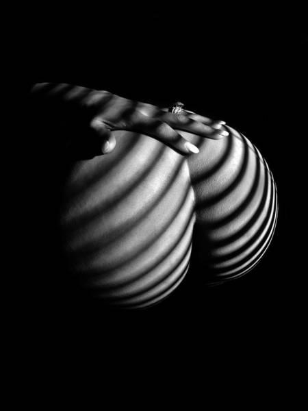 Photograph - 6747 Zebra Woman Nude Stripe Series   by Chris Maher