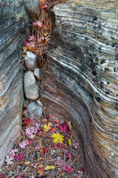 Crevice Photograph - Usa, Utah, Zion National Park by Jaynes Gallery