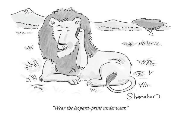 Print Drawing - Wear The Leopard-print Underwear by Danny Shanahan