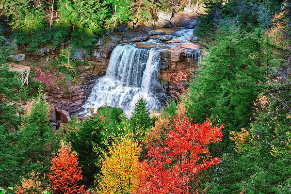 Photograph - Blackwater Falls by Mary Almond