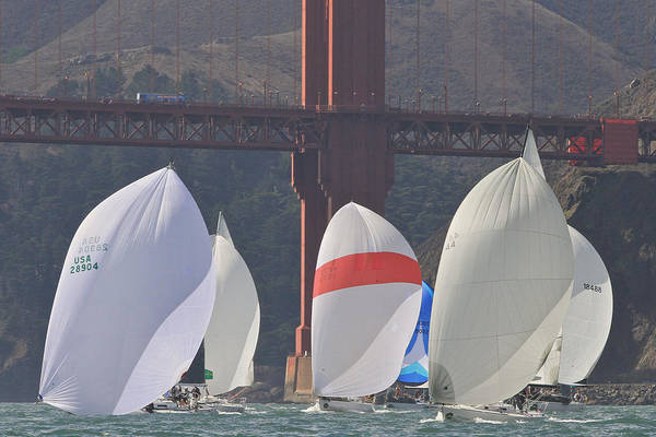 Photograph - Bridge Spinnakers by Steven Lapkin