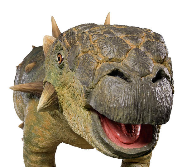Wall Art - Photograph - Euoplocephalus Dinosaur Model by Natural History Museum, London/science Photo Library