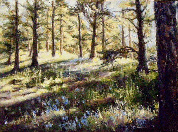 Flagstaff Painting - First Light by Chisho Maas