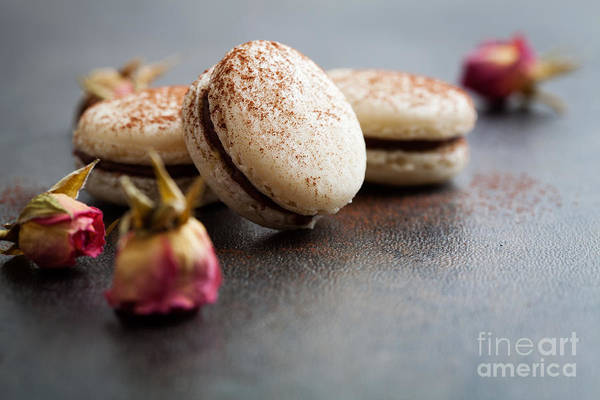 Wall Art - Photograph - French Macaroons by Kati Finell