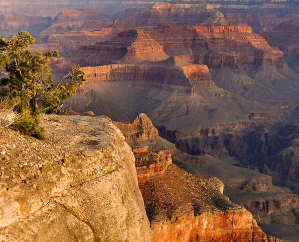 Wall Art - Photograph - Grand Canyon Afternoon by Stephen  Vecchiotti