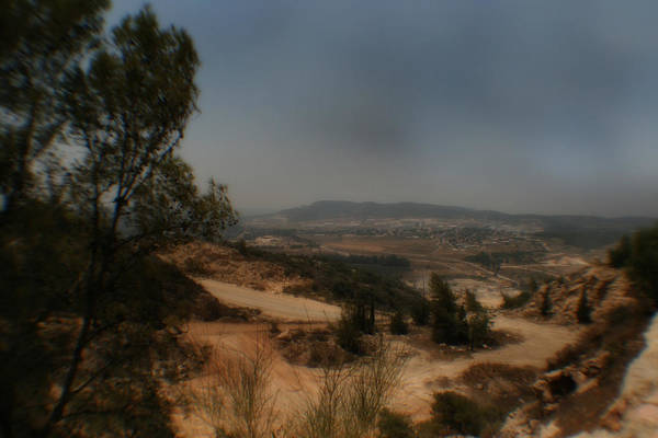 Photograph - Judean Hills by Doc Braham