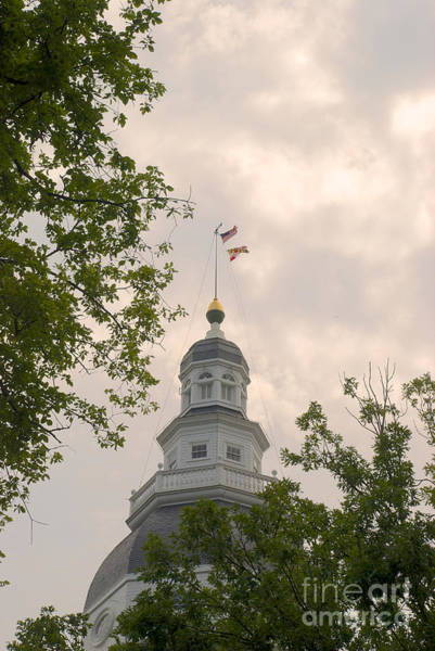 Photograph - Maryland State House Dome by Mark Dodd