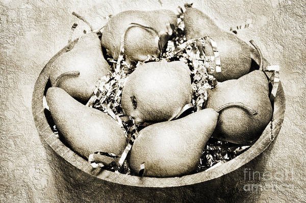 Photograph - 7 Pears At A Party Bw by Andee Design