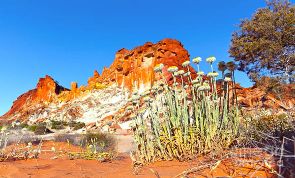 Northern Territory Photograph - Rainbow Valley by Bill  Robinson