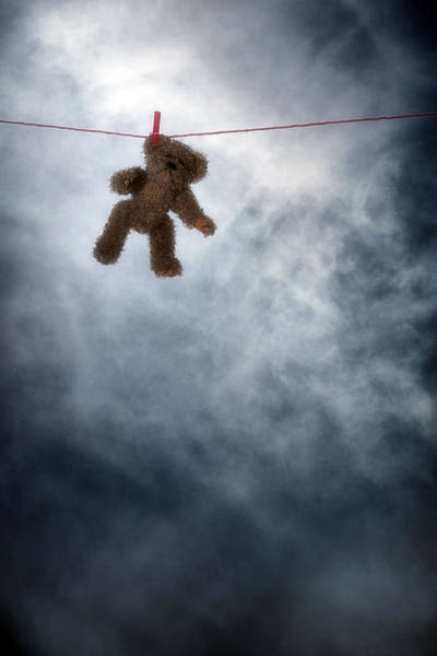 Wall Art - Photograph - Teddy Bear by Joana Kruse