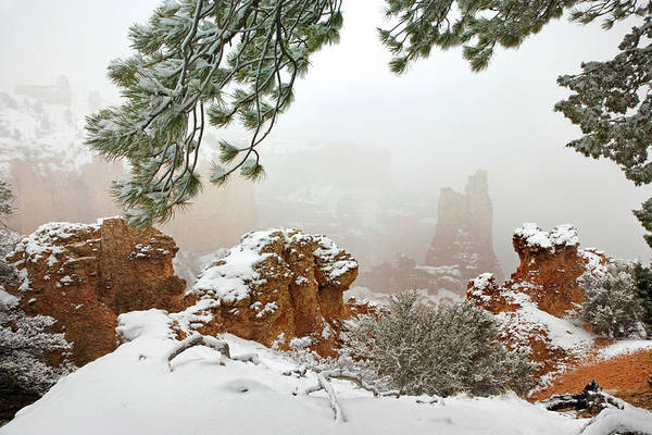 Paria Photograph - Usa, Utah, Bryce Canyon National Park by Jaynes Gallery