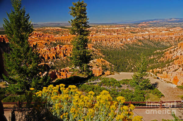 Photograph - 739p Bryce Canyon National Park by NightVisions