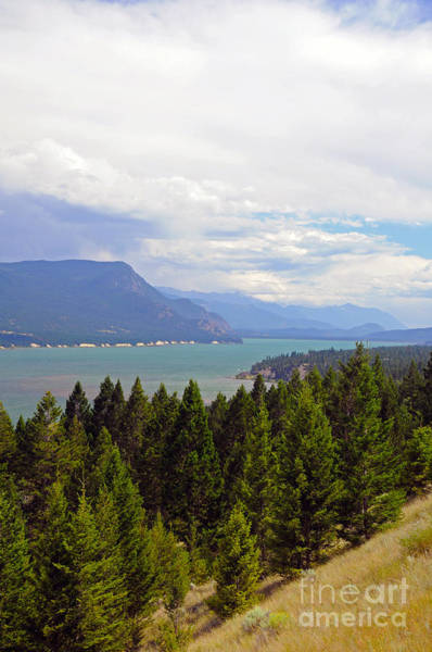 Photograph - 749p Columbia Lake Canada by NightVisions