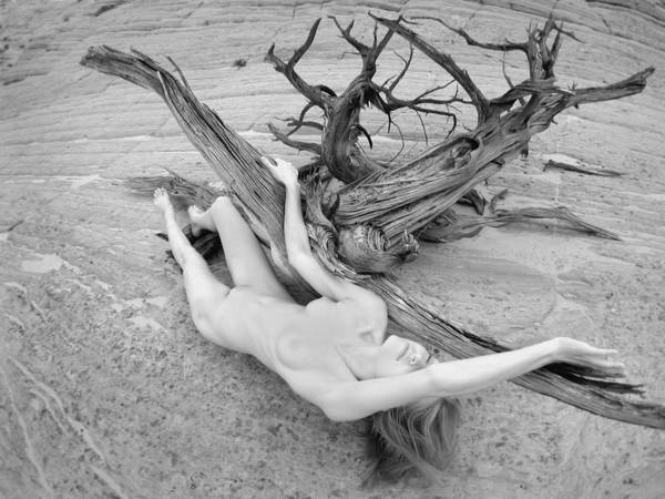 Photograph - 7642 Nude Woman In Desert Wash With Driftwood Black White Infrared Photo by Chris Maher
