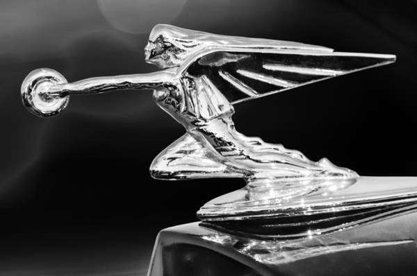 Vintage Hood Ornaments Photograph - 1935 Packard Hood Ornament by Jill Reger