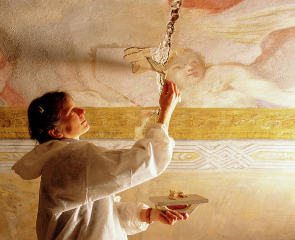 Wall Art - Photograph - Art Restoration by Mauro Fermariello/science Photo Library