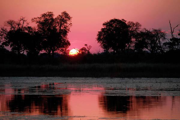 Delta Photograph - Botswana, Okavango Delta by Kymri Wilt