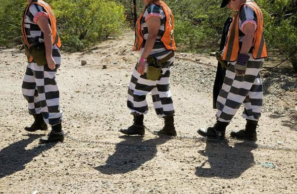 Maricopa Photograph - Chain Gang by Jim West