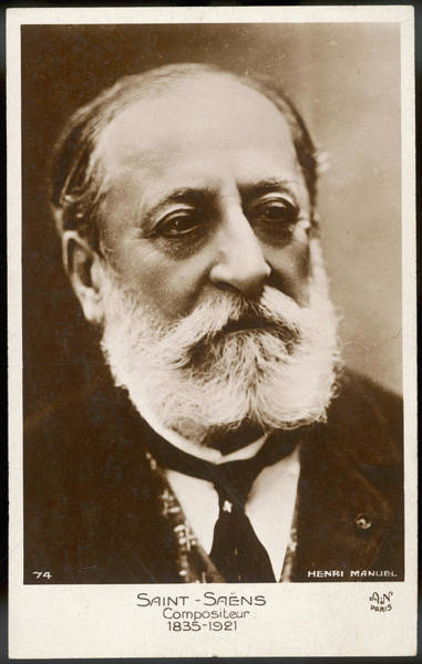 Wall Art - Photograph - Charles-camille Saint-saens, French by Mary Evans Picture Library