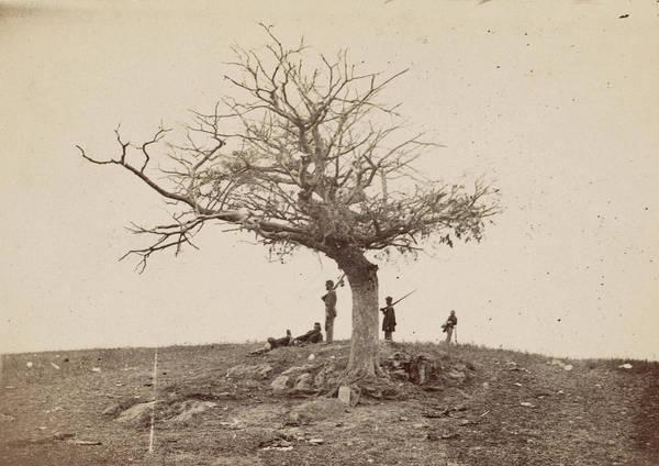 Antietam Photograph - Civil War Antietam, 1862 by Granger
